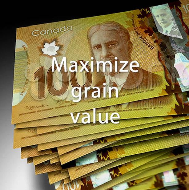 VeriGrain - Growers, Maximize grain value